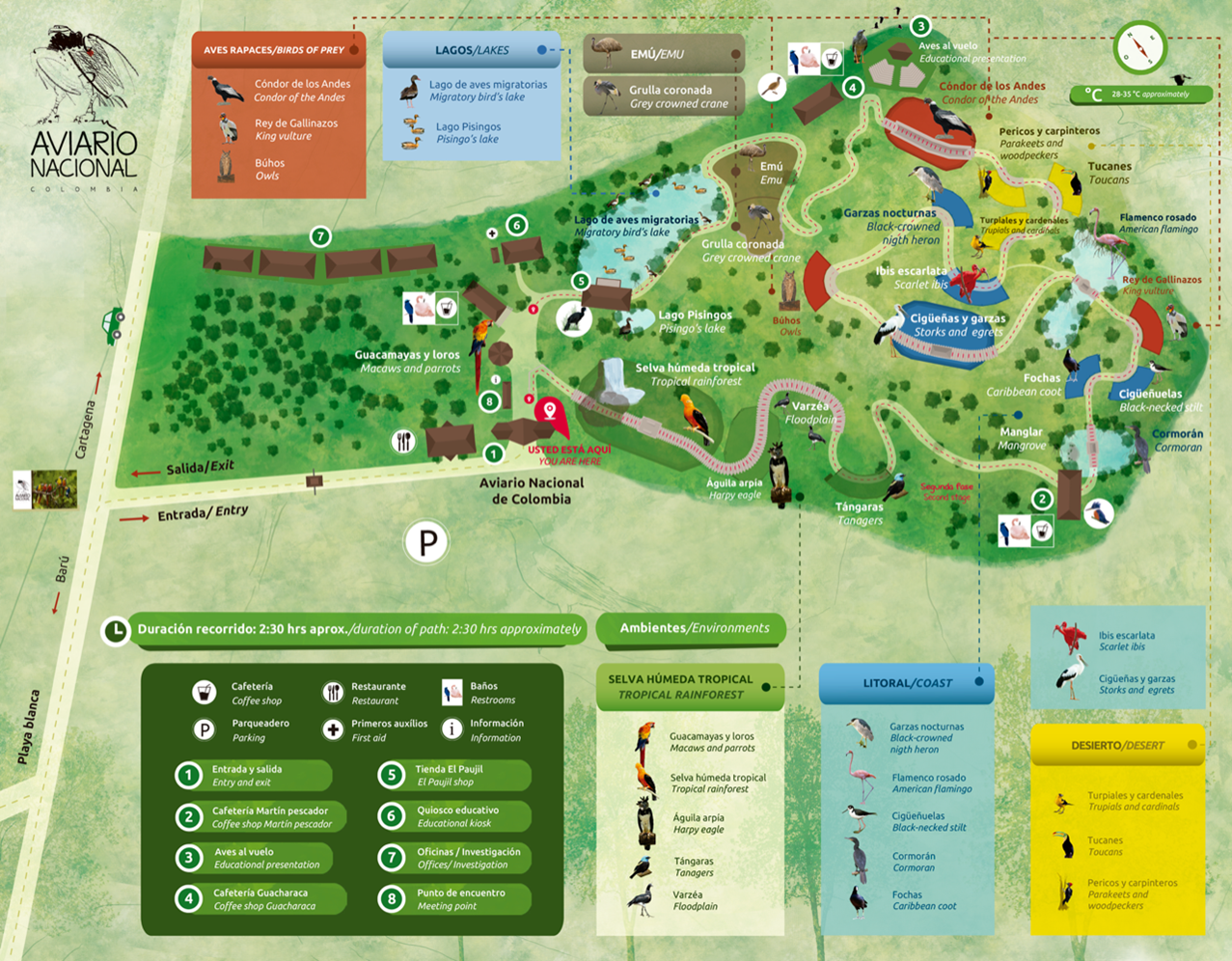 2019 Map of the Aviary